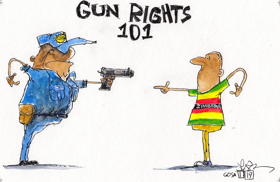 Zimbabwe: Civilian Disarmament Allows State-Sanctioned Murder