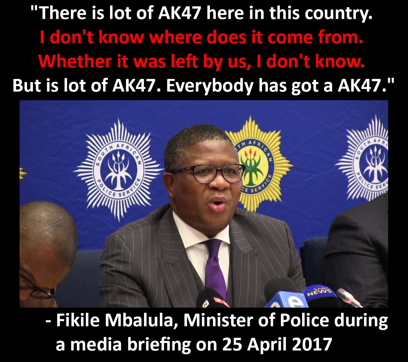 Minister Mbalula's Imprudent War on Guns